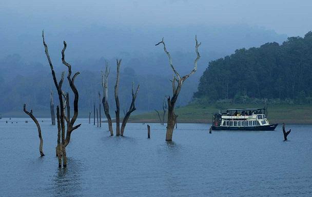 Munnar- Thekkady